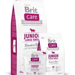 Brit Care Junior Large Breed Lamb & Rice (Ягненок и рис), ГИПОАЛЛЕРГЕННАЯ ФОРМУЛА  ДЛЯ МОЛОДЫХ СОБАК (3 МЕСЯЦА - 2 ГОДА) КРУПНЫХ ПОРОД (БОЛЕЕ 25 КГ).