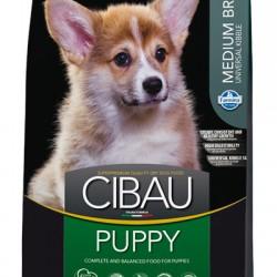 Farmina Cibau Puppy Medium, корм для щенков средних пород, беременных и кормящих собак