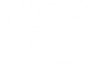 Грызуны